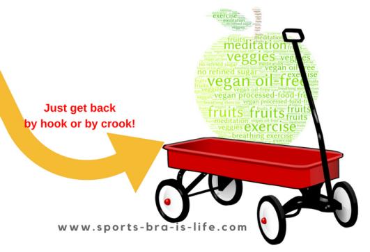 www.sports-bra-is-life.com (1)
